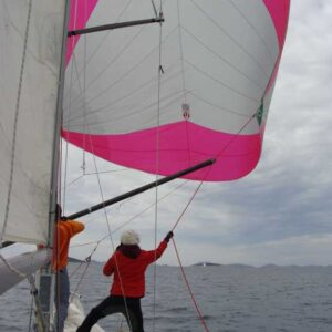 Spinnaker In Theory And Practice - One Day Training Program